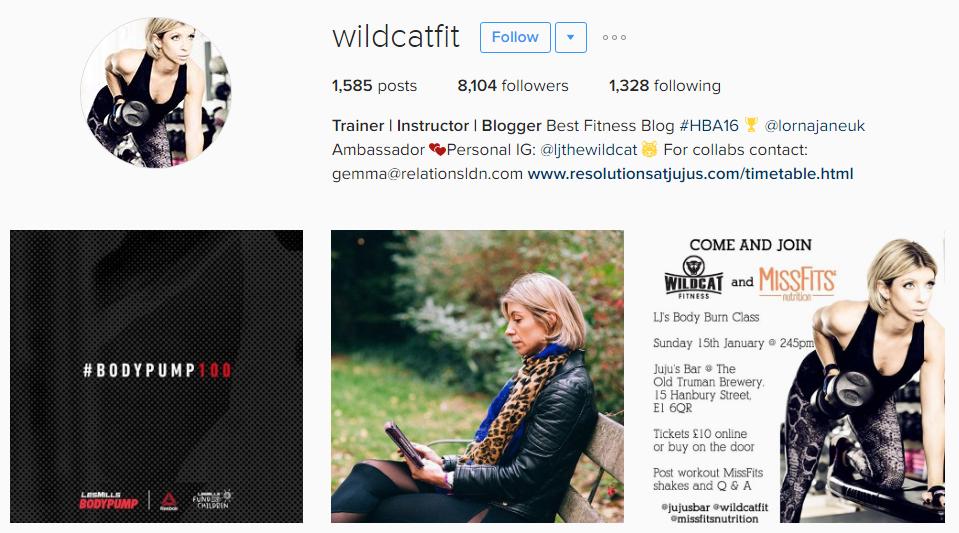 Wildcat Fitness UK - Instagram Fitness Industry